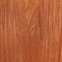 cherry texture wood, tree background