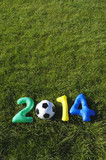 Blue Green Yellow Football 2014 Message Grass Background