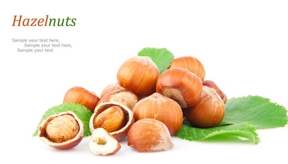 Hazelnuts & text