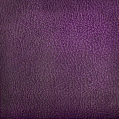 violet leather texture closeup