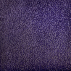 blue leather texture closeup