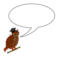 An owl wearing a graduation cap with a speech bubble