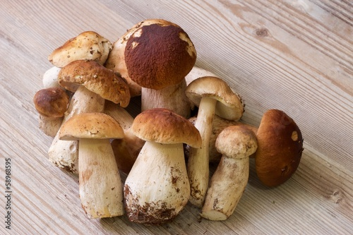 Natural white mushrooms on the table