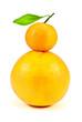 Постер, плакат: грейпфрут и мандарин на изолированном белом фоне