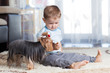 kid feeding pet dog