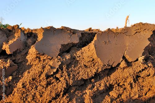 vue en coupe transversale de terre arable