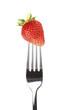 Erdbeere auf Gabel