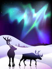 The aurora with a deers in the foreground