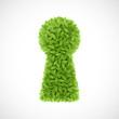Green leaves keyhole
