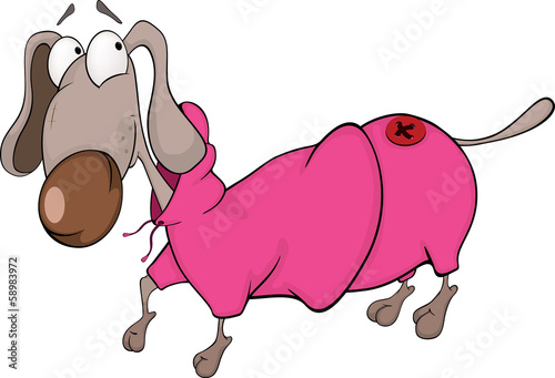 The dachshund in a coat. Cartoon