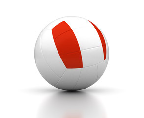 Peruvian Volleyball Team
