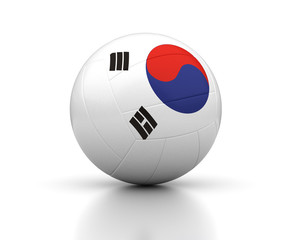 South Korean Volleyball Team