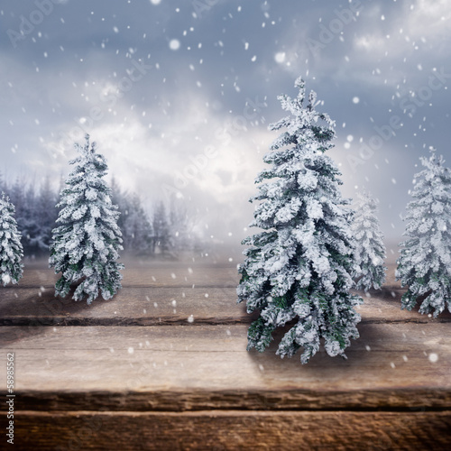 Wooden Winter Landscape