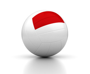 Indonesian Volleyball Team
