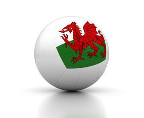 Welsh Volleyball Team