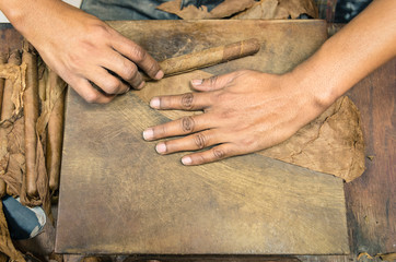 Manual production of cigars - Live preparation
