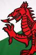 Detail on the flag of Wales - United Kingdom - 59004184