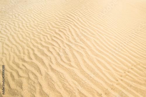 Leinwandbild Motiv Wüstensand