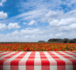 Tablecloth on Flower Farm