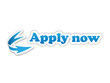 APPLY NOW Icon (online application jobs vacancies careers)