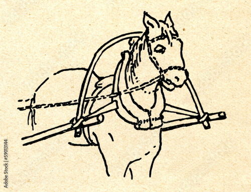 Horse harness with hames (russian harness)