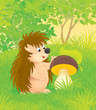 hedgehog with a mushroom in a forest glade