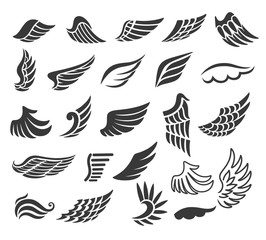 Wings. Set of  design elements.