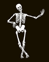 Funny vector skeleton isolated over black. Halloween design