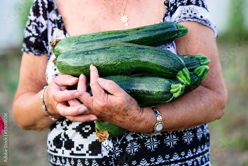 retired woman holding zucchini in her hands