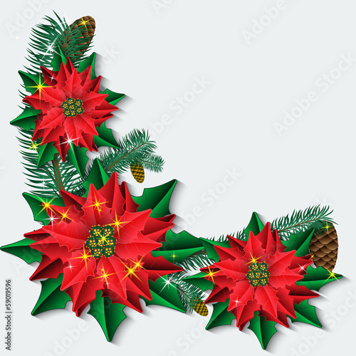 Christmas background with poinsettia flowers and fir branches