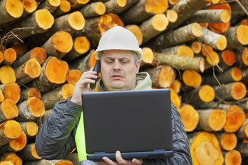 Forest employee with PC near stacks of logs