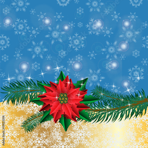 Christmas golden background with poinsettia flowers