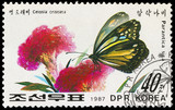 KOREA - CIRCA 1987: stamp printed by KOREA, shows the butterfly