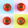 collage mit tomaten