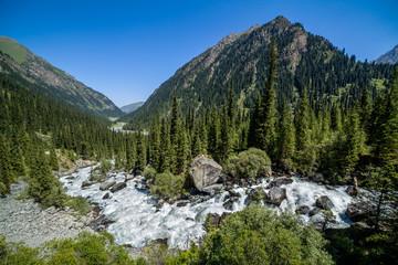 Wild water. Karakol river in Kyrgyzstan