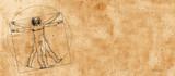 Vitruvian Man by Leonardo Da Vinci - 59033115