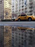 Park Avenue Puddle