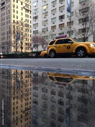 Park Avenue Puddle