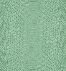 painted in light green snake skin