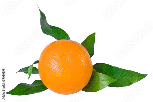 Ripe orange fruit with leaves isolated on white