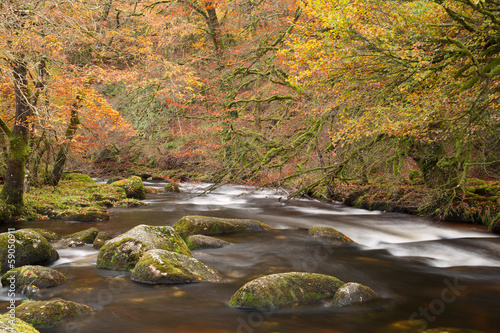 The river Dart Dartmoor Devon Uk