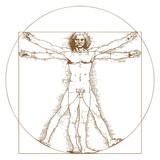 Vitruvian Man by Leonardo Da Vinci - 59051350
