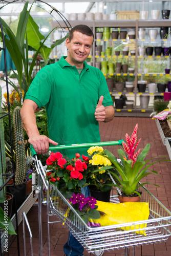 pflanzen im fachhandel einkaufen