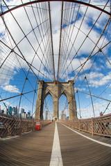Brooklyn Cage