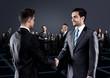 Portrait of young business people. Handshake