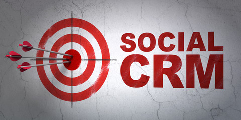 Business concept: target and Social CRM on wall background