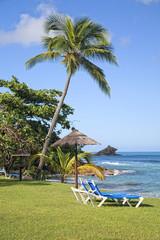 Antigua Shoreline