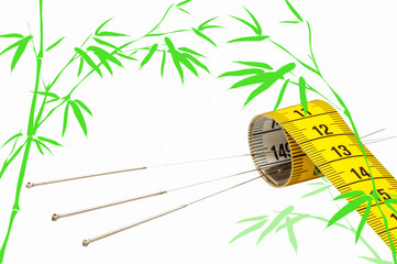Akupunktur zum Abnehmen