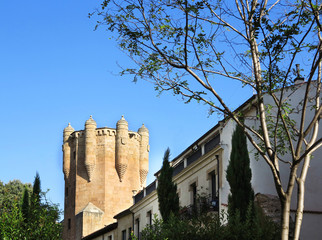 Tower of medieval castle