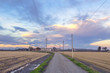 Countryside winter panorama at sunset color image